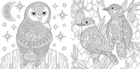 Coloring pages. Beautiful owl and couple of lovely birds in the garden.