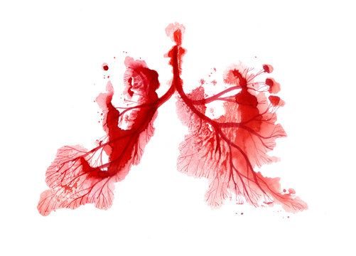 Watercolor illustration with drawing. Lungs. Red. Coronavirus.