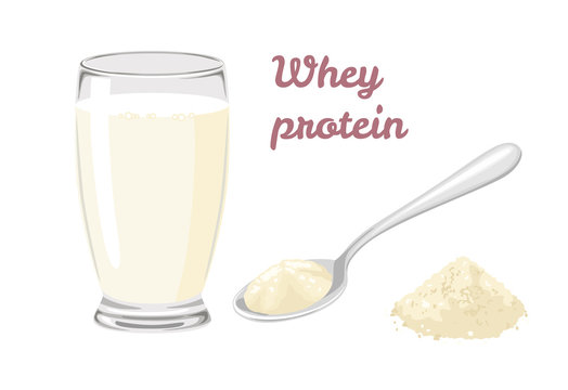 Whey protein powder in spoon isolated on white background. Drink with whey protein in glass. Stock vector illustration in cartoon simple flat style.