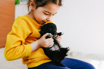 Closeup image of cute child playing at home with little dog. Pretty little girl with the puppy. Adorable kid hugging, playing with her pet at the carpet in the room. Adoption of animal shelter concept