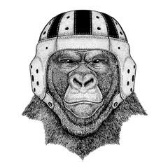Gorilla. Portrait of animal wearing rugby helmet
