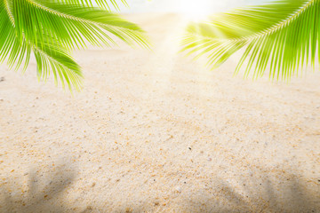 Fototapete - Blur beautiful nature green palm leaf on tropical beach with bokeh sun light wave abstract background.