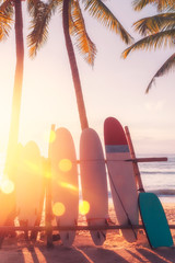 Fototapete - Surfboard and palm tree on beach background.