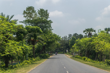 Highway Road Surrounded by Green Trees