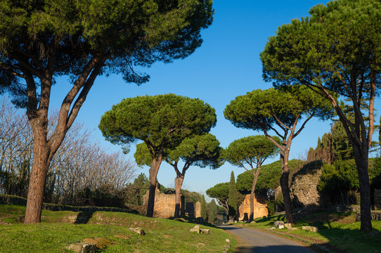 A stretch of the Appian Way, one of the most important streets of the Roman Empire. It was called Regina Viarum by the Latins. This road connected Rome to Brindisi, an important port onuments