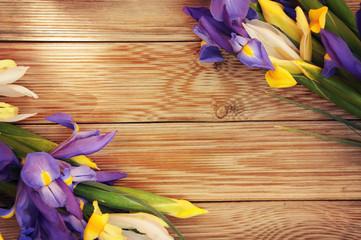 iris flower on white wooden background