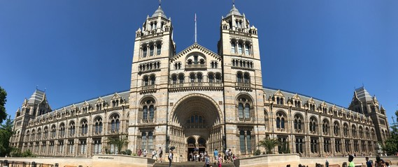 The Natural History Museum in London Fotomurales