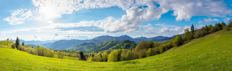stunning rural landscape in mountains. fields and meadows on hills rolling in to the distant ridge. trees in fresh green foliage. panorama of a countryside on a sunny day in spring. fluffy clouds