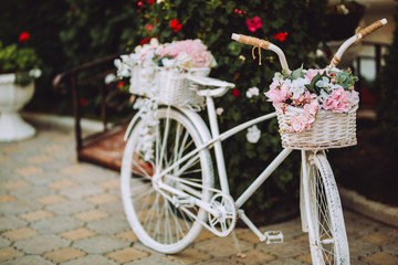Retro white bicycle with beautiful flower basket isolated on green plants background.