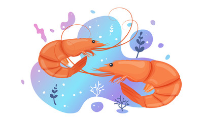 Two cute shrimp in the sea. Brightly-coloured ocean shrimp. Underwater marine wild life. Vector illustration.