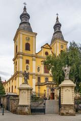 Wall Mural - Cistercian Church, Eger, Hungary