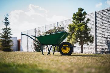 Green wheelbarrow in the garden. Garden wheelbarrow full of weeds and branches.