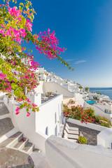 White architecture on Santorini island, Greece. Beautiful summer landscape, sea view. Beautiful terrace with flowers, sea view. Santorini island, Greece.