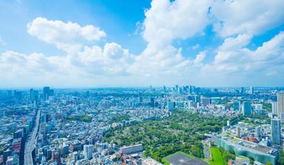 Acrylic Prints Blue 東京風景 ワイド 六本木から望む新宿 渋谷方面 2019年9月