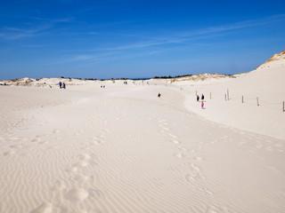 Obraz Słowiński Park Narodowy z ruchomymi wydmami jest położony w środkowej części polskiego wybrzeża, - fototapety do salonu