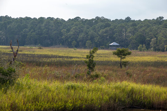 Weeks Bay Fish River wildlife preserve Park marsh meadows and forests around Bay in Alabama