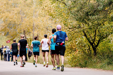 Fototapete - back group man runners running in autumn park on road