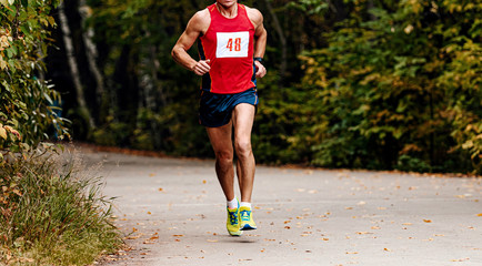 Fototapete - male runner middle aged athlete running in autumn park race