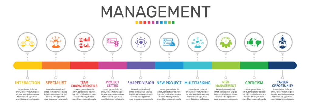 Management Infographics vector design. Timeline concept include interaction, specialist, team characteristics icons. Can be used for report, presentation, diagram, web design