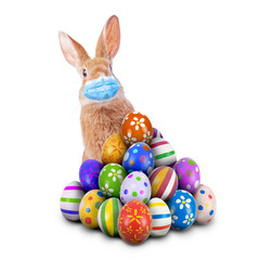 Easter Bunny or Easter Rabbit scared of Coronavirus or Covid-19 pandemic with surgical mask hiding...