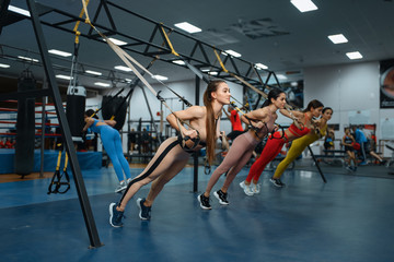 Group of women doing fit exercise in gym