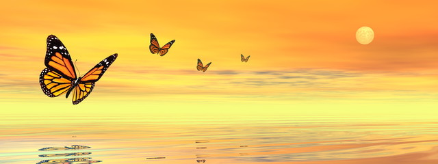 Butterflies flying to the sunset upon the ocean - 3D render