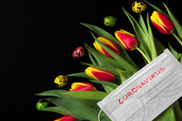 Easter time in coronavirus covid 19 quarantine concept. Face medical mask on tulip flowers with eggs on black background