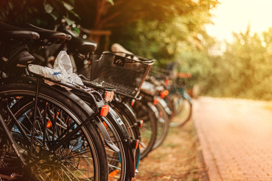 bicycles in the park with blurry background and sunset