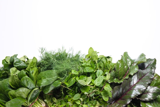 Clean eating concept. Bunches of different ripe juicy freshly picked organic herbs and greens isolated on white background. Healthy diet for spring summer detox. Vegan raw food. Close up.