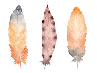 Hand drawn watercolor feather set on white background. Boho style graphics.