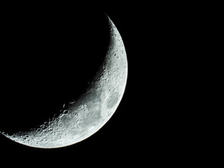 increasing sickle-shaped quarter moon with its moon craters stands in the black night sky Fotomurales