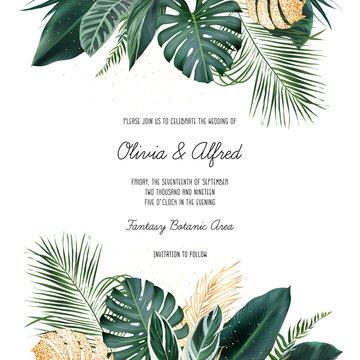 Paradise plants, greenery and palm card. Stylish fashion frame.