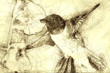 Wall Mural - Sketch of a Black-Chinned Hummingbird Searching for Nectar Among the Orange Flowers
