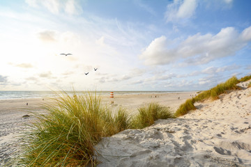 View to beautiful landscape with beach and sand dunes near Henne Strand, North sea coast landscape...