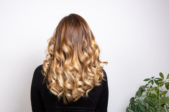 Back part of the hair of a young blond haired woman with balayage effect, isolated on white background. Hair care and nature concept