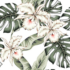 Tropical white orchid flowers, green monstera, banana palm leaves, white background. Vector seamless pattern. Jungle foliage illustration. Exotic plants. Summer beach floral design. Paradise nature