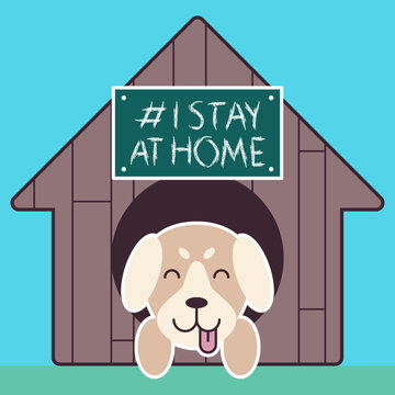 The dog yelped his tongue and stuck his head out of the doghouse with desk text # I stay at home. Awareness social media campaign and coronavirus prevention. Puppy smiling in doghouse
