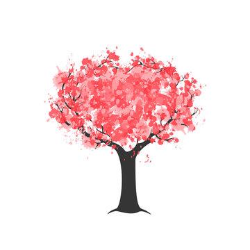 Watercolour sakura blossom pink tree isolated on white. Vector