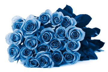 Wall Mural - trend color of the year 2020 classic blue. beautiful roses bouquet isolated
