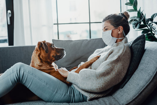 Woman wearing a protective face mask cuddles, plays with her dog at home because of the corona virus pandemic covid-19