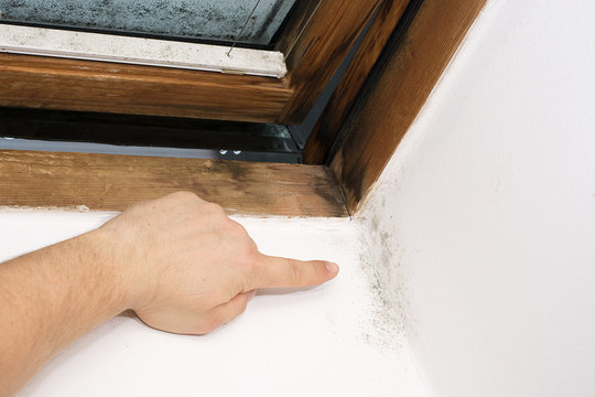 moisture in the corner of the wall, caused by insufficient ventilation, bad thermal insulation