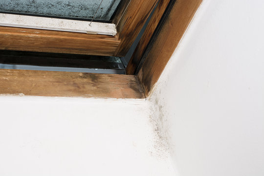 moisture on the window pane and in the corner of the wall, insufficient ventilation and thermal insulation