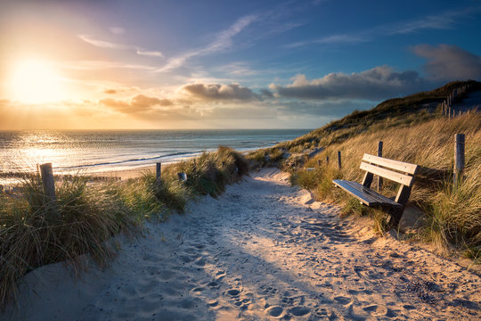 evening sunshine over bench and path to sea beach