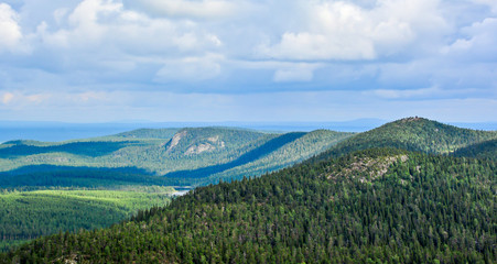 Foto auf AluDibond Khaki Forest landscape in Lapland Finland