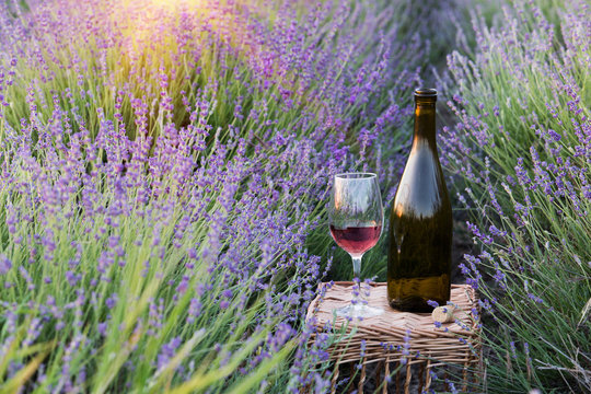 Delicious champagne over lavender flowers field. Violet flowers on the background. Sunset sky over lavender bushes. Close-up of flower field background. Design template for lifestyle illustration.