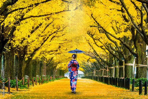 Wall mural Beautiful girl wearing japanese traditional kimono at row of yellow ginkgo tree in autumn. Autumn park in Tokyo, Japan.