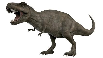 3d rendered t-rex tyrannosaurus rex Wall mural