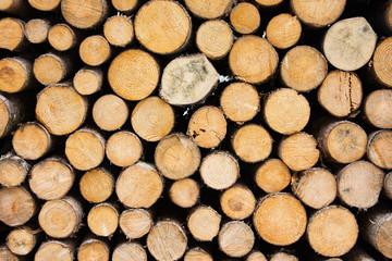Photo sur Aluminium Texture de bois de chauffage Firewood texture. Background of cutted logs.