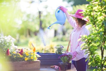 Woman gardener potting and watering flowers