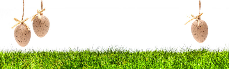 Braune Eier in einer Grünen Wiese Banner